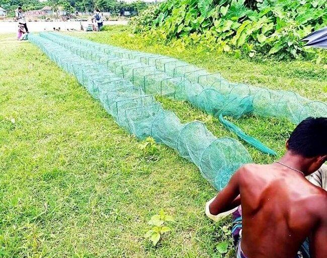 রাজবাড়ীর পদ্মায় 'চায়না দুয়ারী' ফাঁদ পেতে মাছ শিকার, হুমকির মুখে মৎস্য সম্পদ